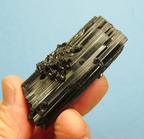 Double / multi-terminated black tourmaline (schorl) crystal with shiny, jet black colour and lovely lustre