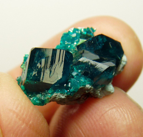 Dioptase crystals on a (?)planchéite / shattuchite matrix