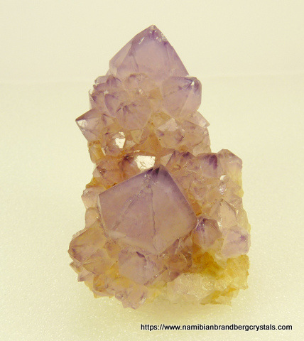 Group of semi-transparent amethyst cactus quartz crystals on matrix