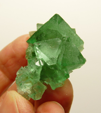 Beautiful group of green fluorite crystals