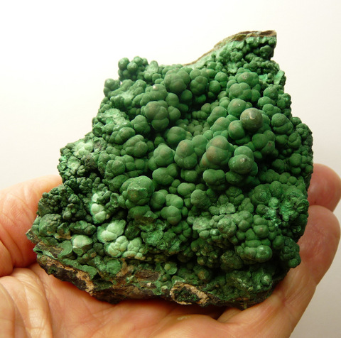 Botryoidal malachite on a conglomorate matrix