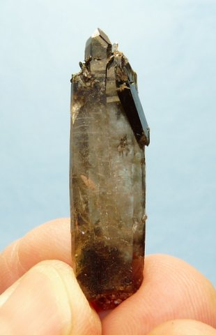 Smoky quartz crystal with aegerine