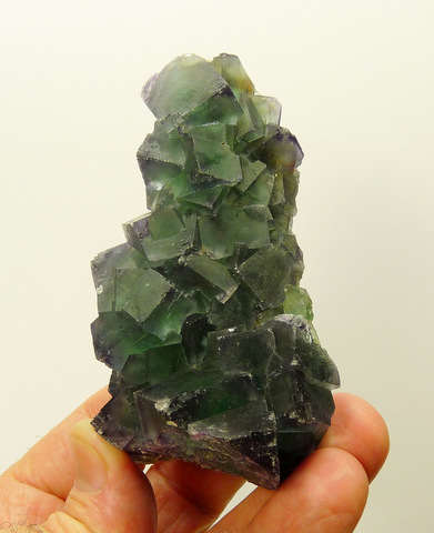 Green fluorite crystal cluster with bits of purple to their edges